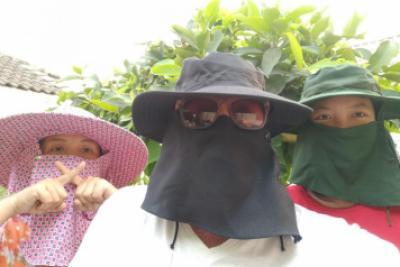 Vi sköter oss här i Chiang Rai